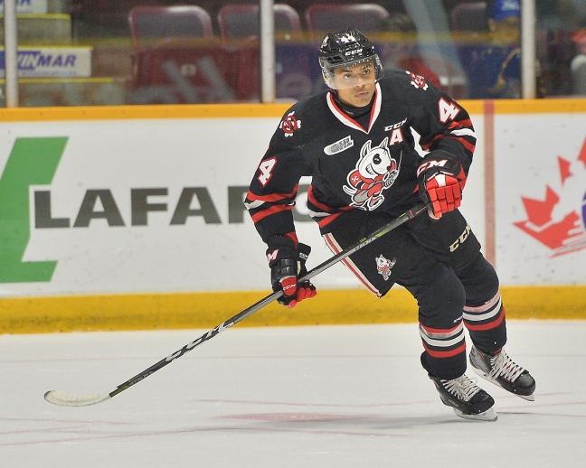 Akil Thomas of the Niagara IceDogs. Photo by Terry Wilson   OHL Images. 285935014
