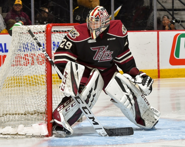 Goalie #29 Hunter Jones of the Peterborough Petes