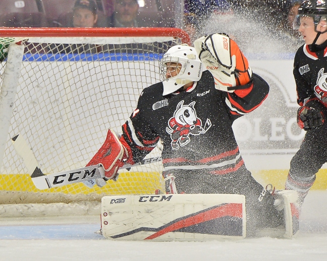 Tucker Tynan of the Niagara IceDogs. Photo by Terry Wilson / OHL Images.